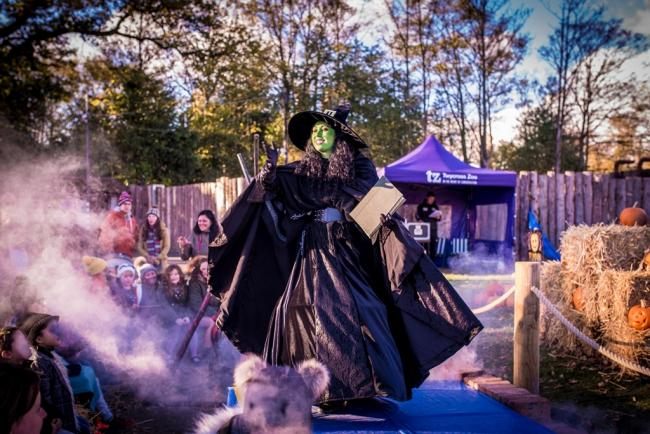 The witch's coven is one of many special attractions at Twycross's Boo at the Zoo event.