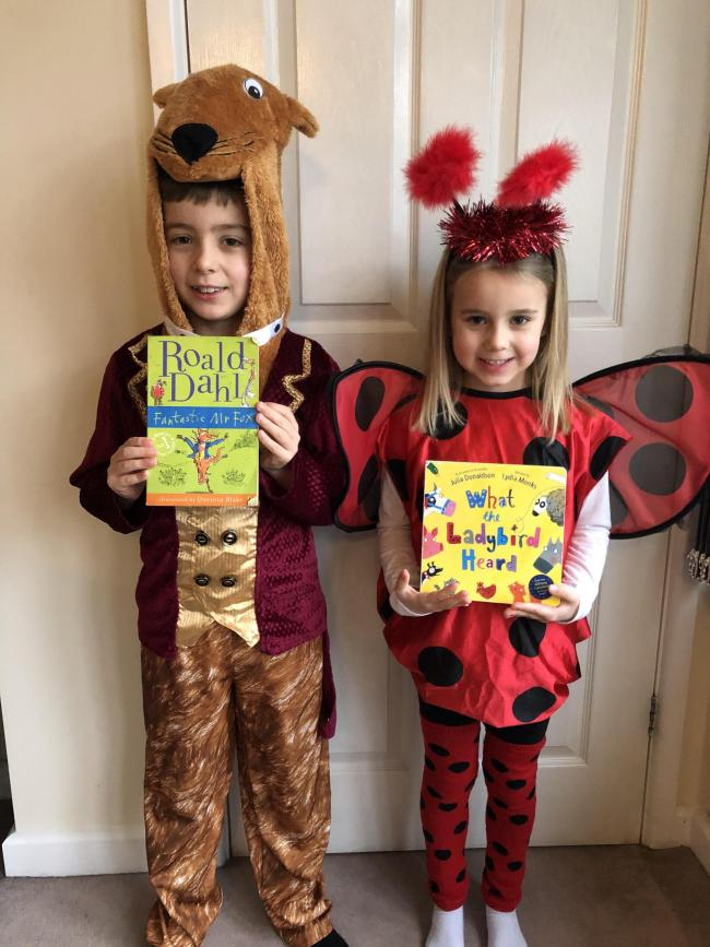 James and Megan, age 8 & 5.  Fantastic Mr Fox and What The Ladybird Heard St Catherines Primary School, Marlpool