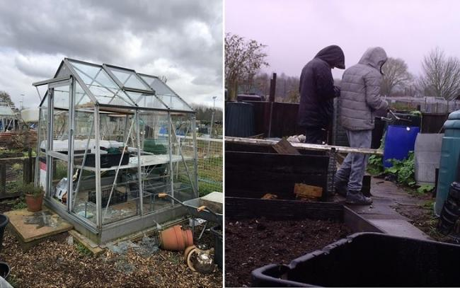 Thousands of pounds worth of damage was caused to greenhouses and sheds at the Kingsway allotments in Stourport