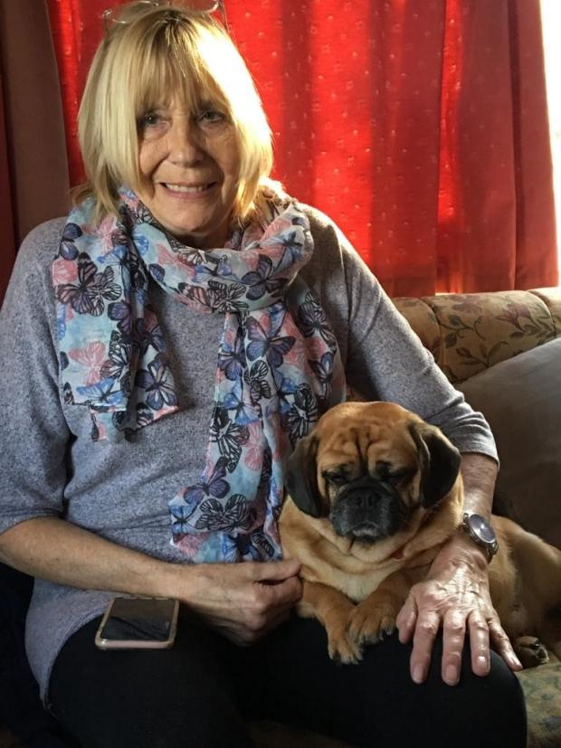 Kidderminster Shuttle: Sandra Rolfe and her Crossbreed Penny, a mix of Pug and King Charles Spaniel. Picture: Vets Now