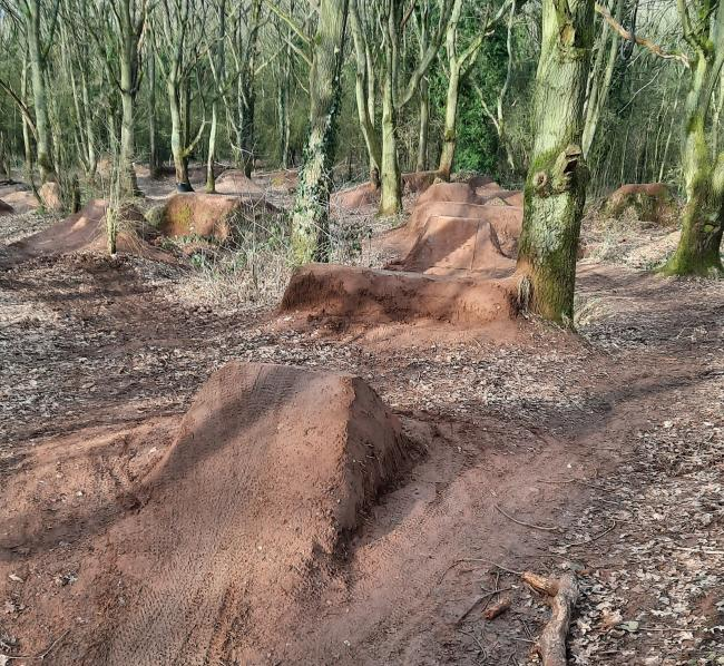 The existing dirt jumps at Burlish woodland