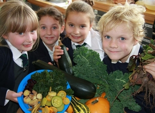 Eating their greens: From left, Harriet Ferris, Ellie Dusconi, Sophie Elliot and Zac Hayward, all 7, with the fresh veg.