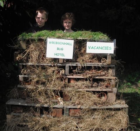 Bug-ging out: Joshua Allen and Ollie Neill at the bug hotel.