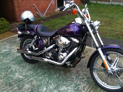 Stolen: The purple Harley Davidson worth £7,500.