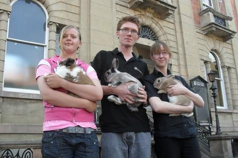 Bunny business: Sarah Collins, organiser Julian Phillips and Rebecca Harvey prepare for the rabbit show.