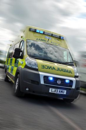Man taken to hospital after falling from horse