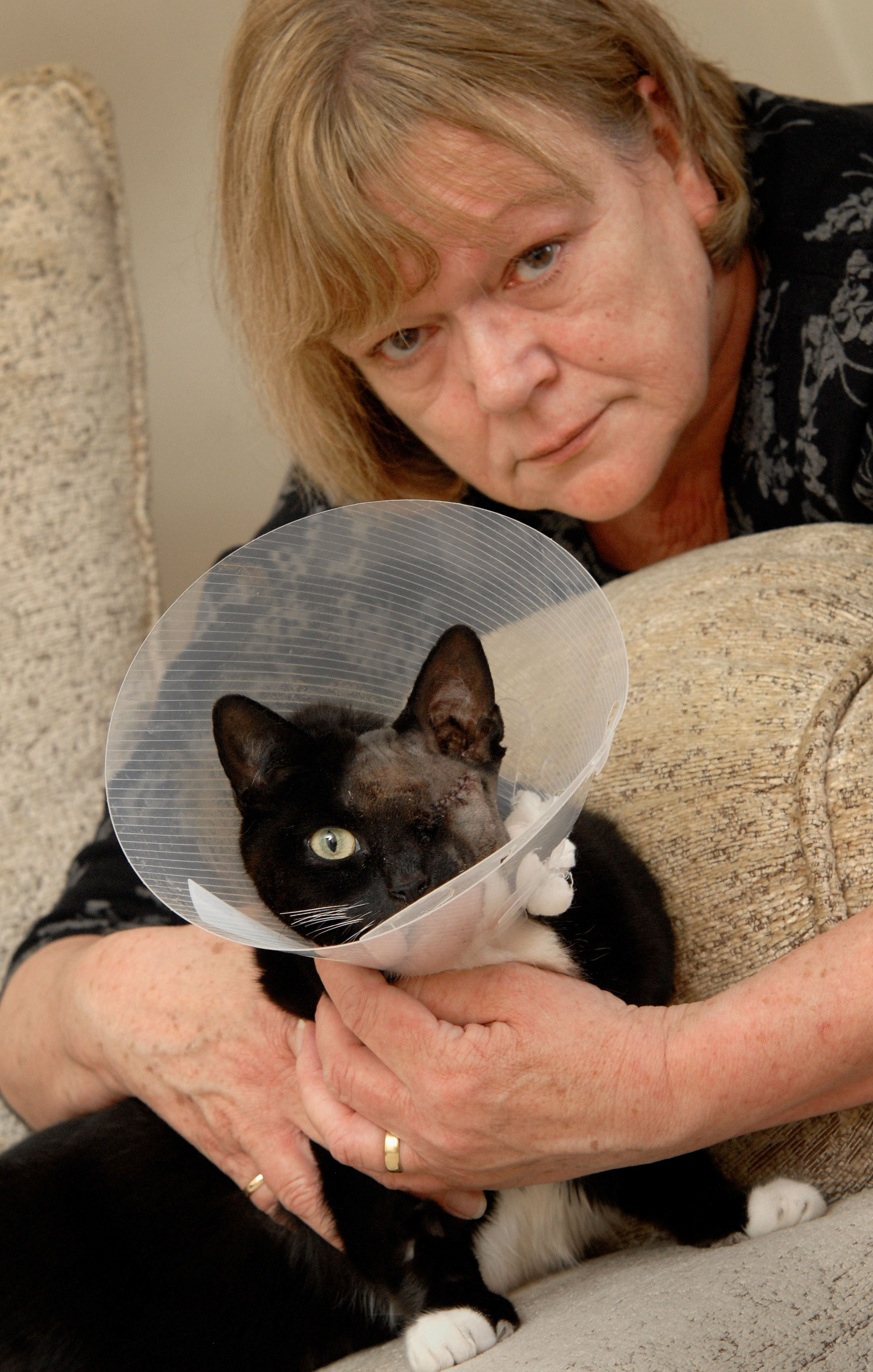 SHOT: Pauline Davies with pet cat Roxy, who has lost an eye after being shot.