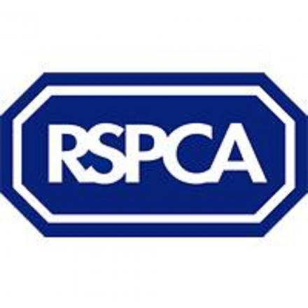 RSPCA holding charity tea