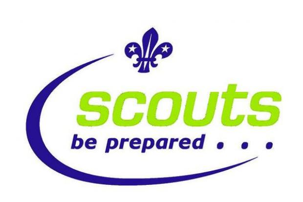Lack of leaders leave Scouting in crisis