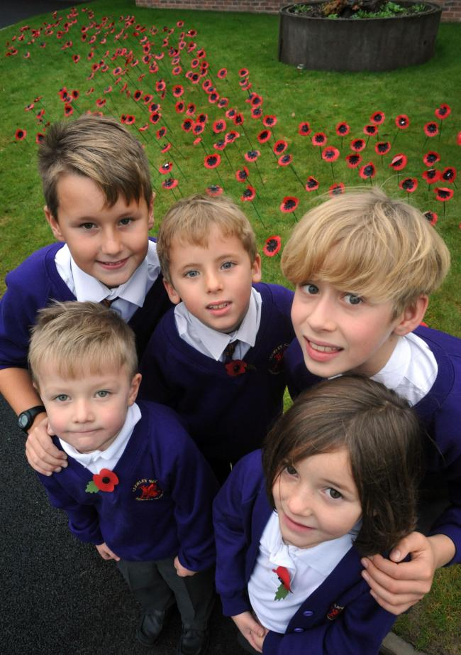 COMMEMORATION: Cookley pupils Harry Laud, 5, Emily Willetts, 6, Oliver Williams, 11, Jack Thompson, 7, and Robert Knight, 10, in front of the display. 461427L