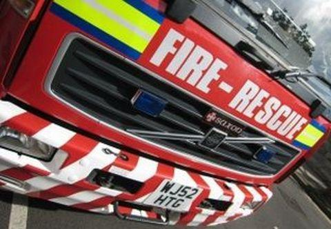 Garden fire in Cookley takes out conifer trees and shed