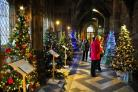 Last year's Worcester Cathedral Christmas Tree Festival. Photo: John Anyon