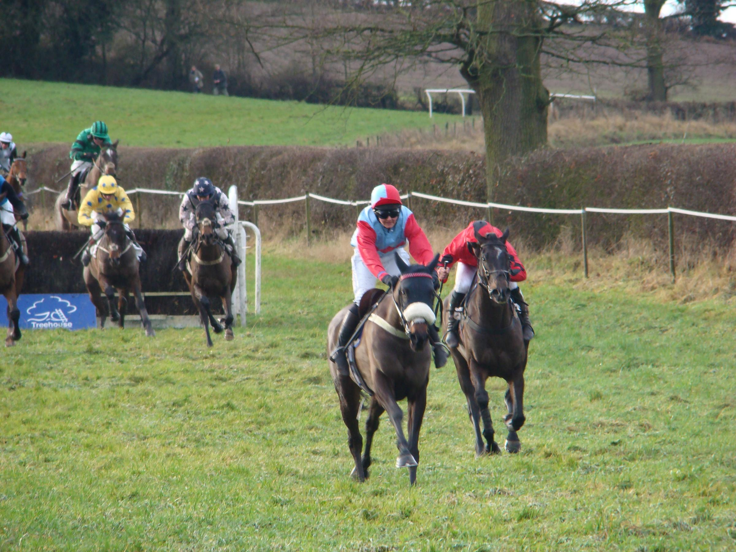 Winners of the first race, Blue et Or and jockey Hannah Lewis, lead Champione as they race towards the last