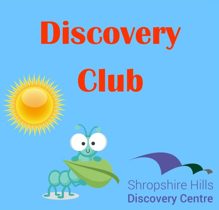 Discovery Club - Bug City