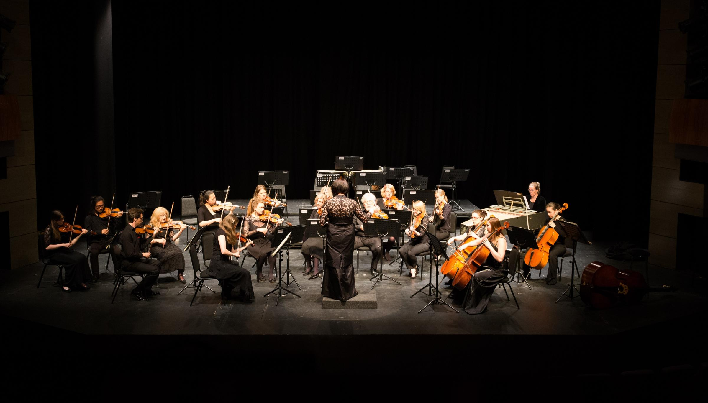 The Kidderminster Festival Orchestra