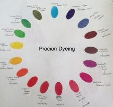 Procion Dyeing Workshop