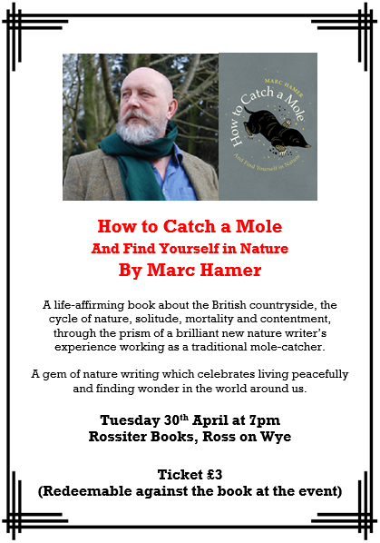 How to Catch a Mole by Marc Hamer