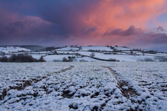 A general view of fields near Trelystan looking back towards Shropshire Hills AONB during snowfall on Friday, December 8, 2017.