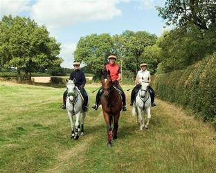 Saddle up for Wyre Forest equestrian open day
